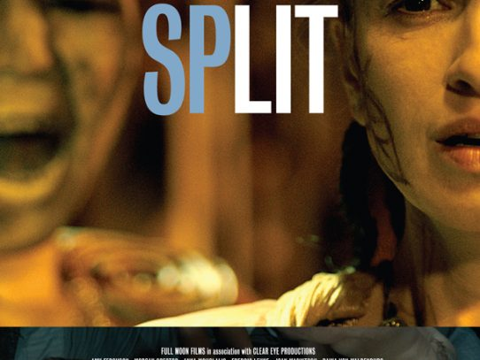 Behind the mask and mirror: an interview with Deborah Kampmeier, director of SPLit