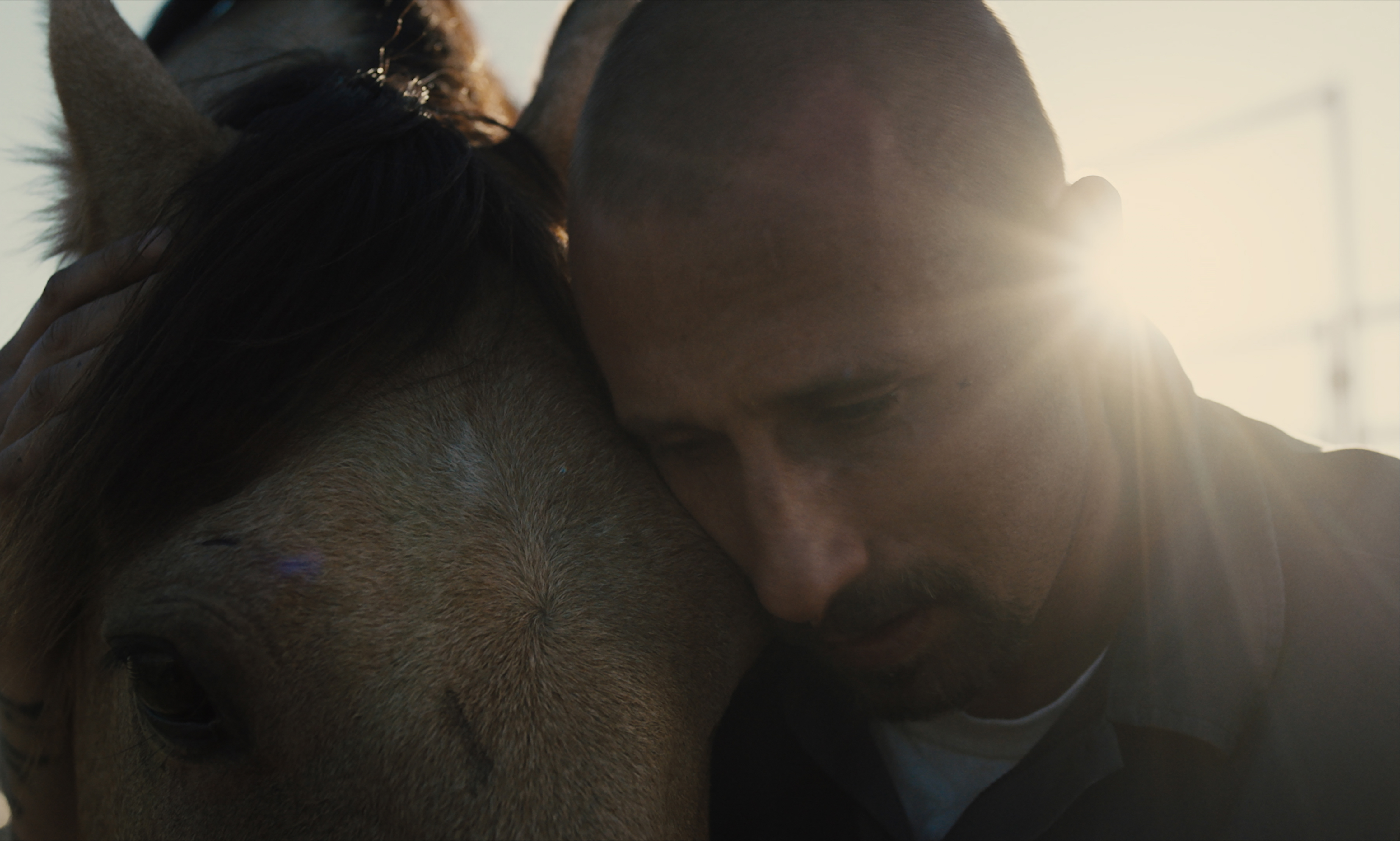 Matthias Schoenaerts appears in The Mustang by Laure de Clermont-Tonnerre, an official selection of the Premieres program at the 2019 Sundance Film Festival.